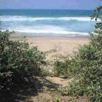 Pristine beach and inviting ocean at the end of short forest path...