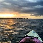 Foto de Aventuras Tropicales Golfo Dulce