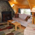 The living room in the Carriage House with wood burning fireplace and satellite TV with DVR play