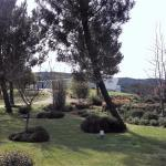 Jardim pertencente ao hotel. Muito lindo.