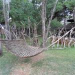 Mziki Safari Lodge Foto