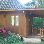 Photo de The Aura Shanti Retreat & Villa