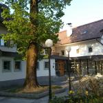 Dvor Jezersek Brnik Hotel Foto