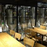Downstairs brewery