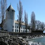 Château de La Tour-de-Peilz