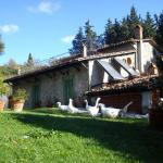Photo of Agriturismo Podere Asche