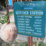 Obraz Sairee Cottage Resort