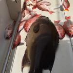 Samara Local Fishing Foto