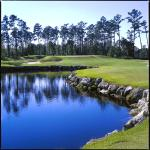 The Par 3 Second Hole at Tiger's Eye
