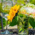 Spring at Linville Falls Winery
