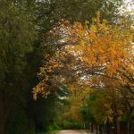 Carlos Paz en otoño