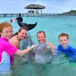 Dolphin Encounter at Anthony's Key