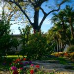 Photo de Pacifica Suites Santa Barbara