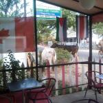 Photo de Panaderia & Heladeria Princesa Bakery & Ice Cream Parlor