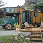 Fox Glacier Lodge Bild