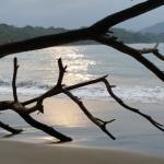 hermosa la playa