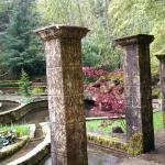 The Secret Garden at Belknap Hot Springs