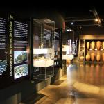 Museu de Guissona Eduard Camps