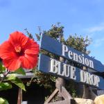 Photo de Pension Blue Drop