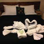 What a surprise, the 'kissing swan towels!