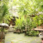 Wonderfull garden