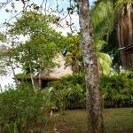 Bosque de Cabo