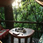 Our teepee porch surrounded by rainforest