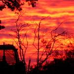 Beautiful Sunset on The deer park farm.