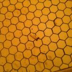 Fag-end on the floor