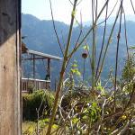 Armonia Ambiental Photo