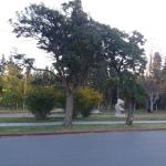 Parque Rosauer