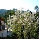 Photo of Costa Morroni
