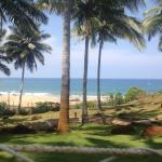 Landscape - Hotel Samudra KTDC Photo