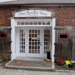 Bodhi Tree Gallery