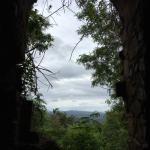 Gecko's Island Adventures Foto