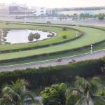 Morning jog around the track