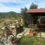 Photo of Agriturismo La Valle degli Ulivi