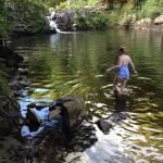 Local swimming hole