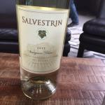 Salvestrin Winery Foto