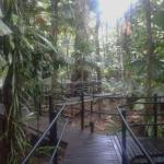 Photo of Daintree Wilderness Lodge