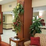 Holiday Inn Express Hotel in Spring Hill, Florida.