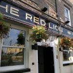 ‪The Red Lion Hotel‬