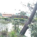 Jardins da Ria Foto