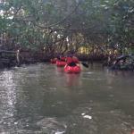 Everglades Area Tours Foto