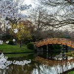 Photo de Missouri Botanical Garden