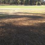 Photo de Foxfire Golf and Country Club