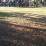 Foxfire Golf and Country Club Photo