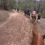 Avonlea Riding Farm