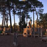 The Grange Reserve - UFO Park