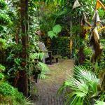 Garden Suite Foto